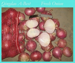 FRESH ONION (Hot Product - 1*)