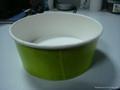 Paper Salad Bowl