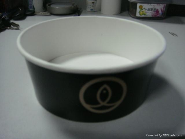 Paper Salad Bowl 2