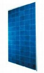 Poly solar module 300W