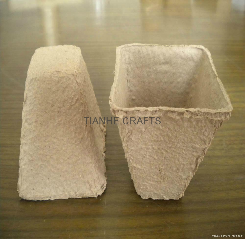 Paper Nursery Pot 1