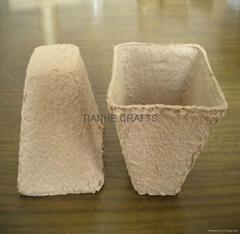 Paper Nursery Pot