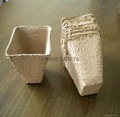 Paper Nursery Pot 2