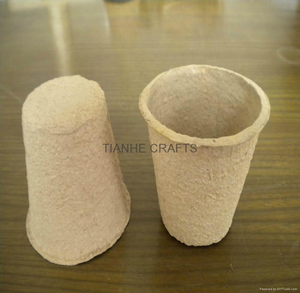 Paper Nursery Pot 3