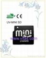 Mini Memory Card