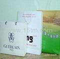 Pp Non-Woven Shopping Bag & Paper Gift Bag 2