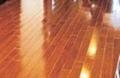 mirror laminate floor