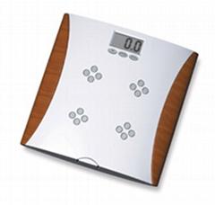 Electronic Fat 109
