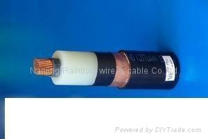 交聯聚乙烯絕緣控制電纜 1