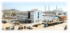 Shandong Fufeng Fermentation Co.,Ltd