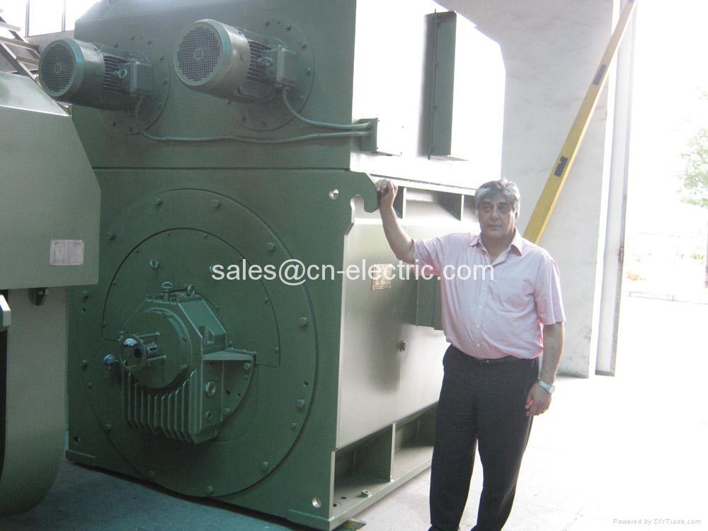 High Voltage Cage : High voltage squirrel cage motor for compressor fan pump