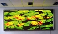 P8 LED Display Indoor 3in1 LED Display With 8mm Pitch 1