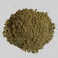 grand fishmeal 2