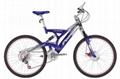 Susp. Bicycle 2