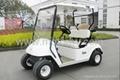 Golf Cart/Electric car