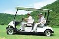 Golf Cart/Electri Car