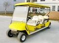 Golf Cart/Electric cart