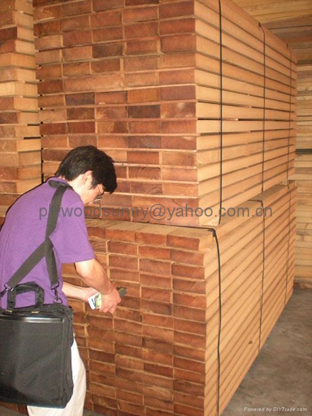 Teak Teak Timber Burmese Teak Sawn Timber Ast China Manufacturer Timber Plywood