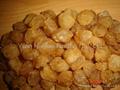 Dried Longan Pulp 1
