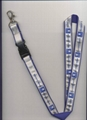 supply lanyard,keychain at low price