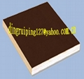 film faced plywood and plywood   skype:ding0127