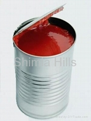 Tomato Paste/ Puree Concentrate