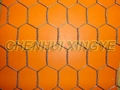 Galvanized Hexagonal Wire Netting 1