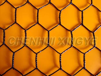 PVC Coated Hexagonal Wire Netting 1