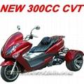 300cc trike(MC-3 (Hot Product - 2*)