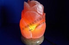 Carving-shape Salt Lamp