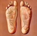detox foot spa 3