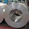 Cold Rolled Coil/Sheet