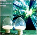 高纯度绿原酸 (纯度>98%)  1