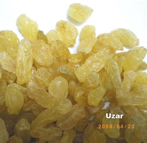 Golden Raisin 2