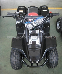 50CC MINI QUAD BIKE WITH CE