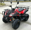 NEW 150CC CVT ATV/QUAD