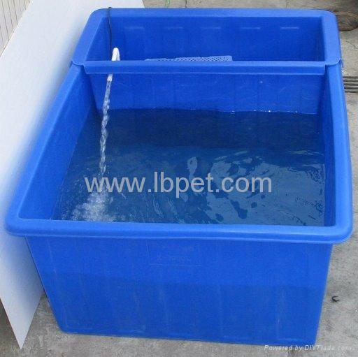 Koi show tub koi 01 viva china manufacturer pet for Koi supplies