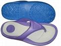 flip-flop/slipper