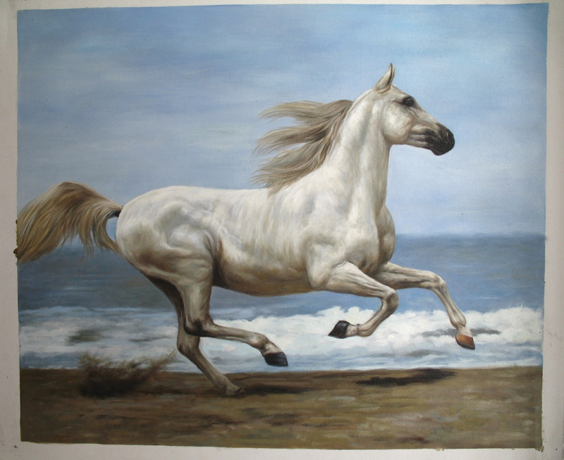 handsome horse ...