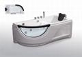 Massage Bathtub 1