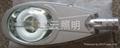 LVD低頻無極燈路燈 4