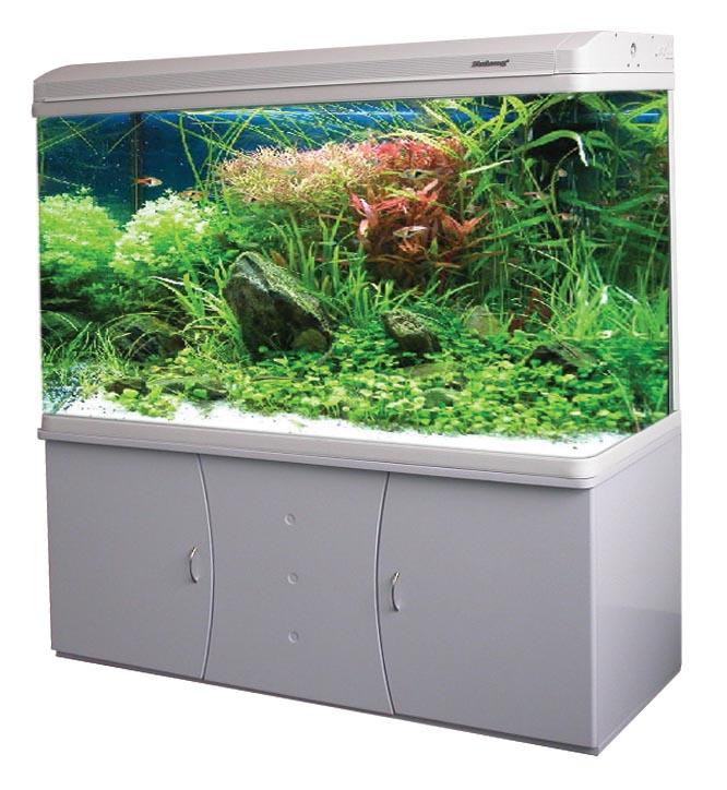 achat aquarium jardiland. Black Bedroom Furniture Sets. Home Design Ideas