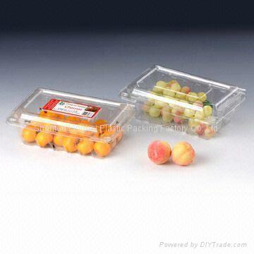 Fruit clamshell 2