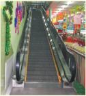 Passenger Conveyor (BLT-CS)