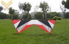 Quad Line Kite