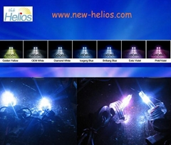 All Type of HID Xenon Lamp (35w,50w)