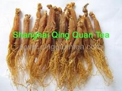 Panax Korean Red Ginseng Root herbal tea