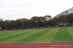 供应质优价廉足球场人造草坪