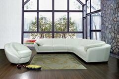 WeiTao's leather sofa