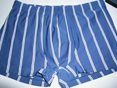 内衣裤/运动装/泳装/沙滩装